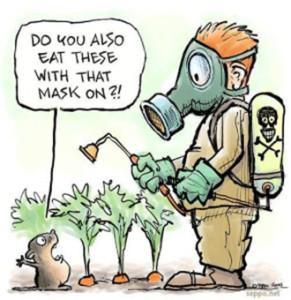 DIY Organic Pesticides