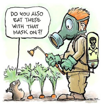 DIY Organic Pesticides