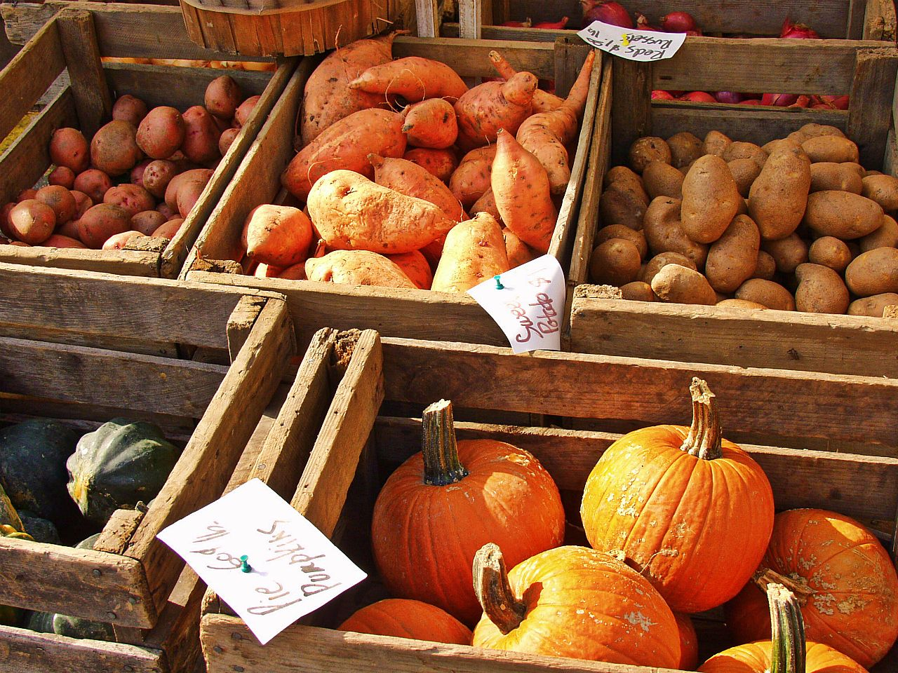 10 foods to fall in love with well being tips for Fall cooking tips